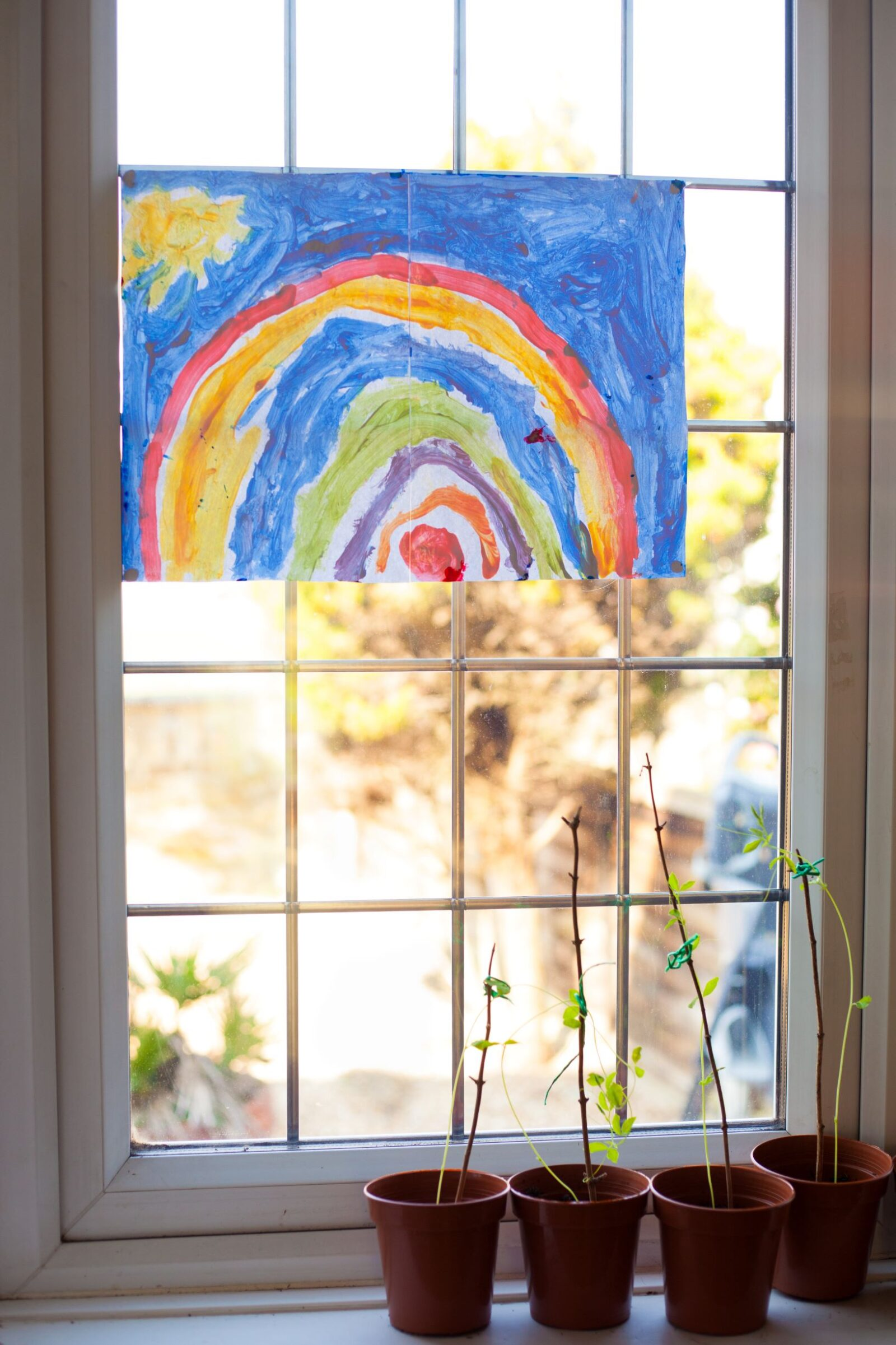 Rainbow Picture Window